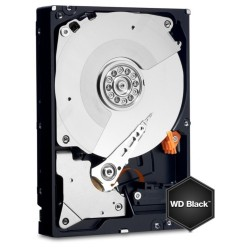 Western Digital BLACK 1 TB 3,5""